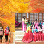 AYFN's Korea Cultural Camp (Autumn) 2017 in Seoul, South Korea